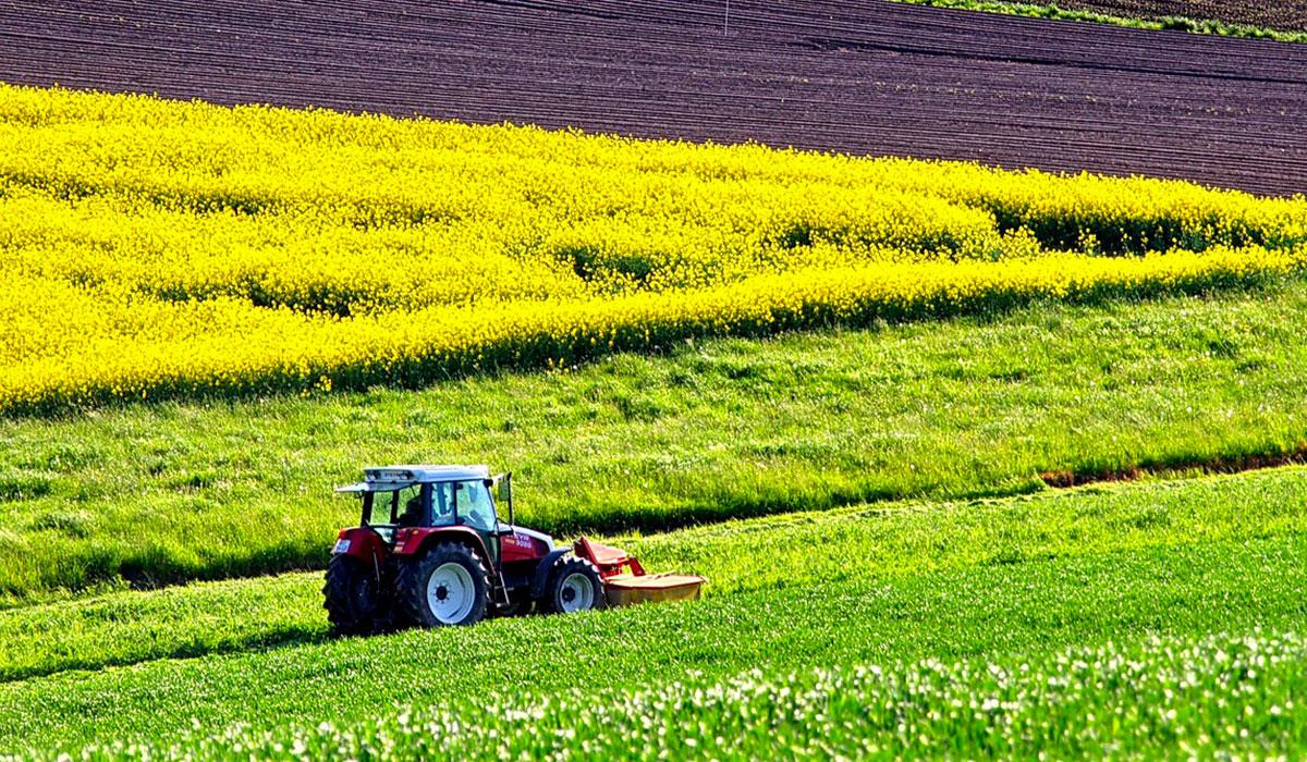 agricoltura-regione-risposte-m5s